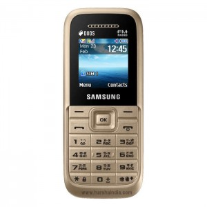 Samsung Cell Phone B110 Guru Plus Gold