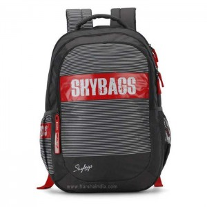 Skybags Backpack Figo Plus 06 Grey